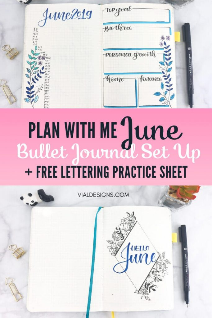 Plan with Me Bullet Journal Setup June 2019 Vial Designs