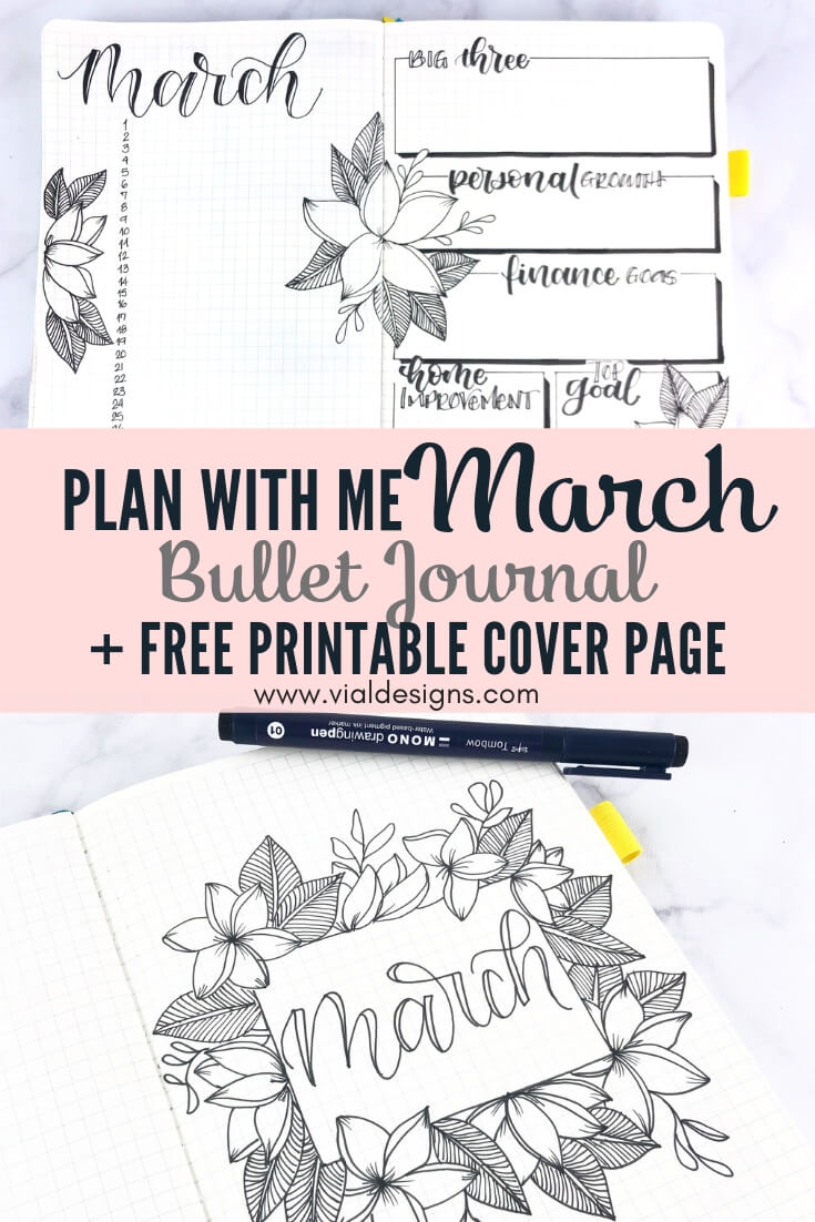 Plan with me Bullet Journal Set up March 2019 by Vial Designs